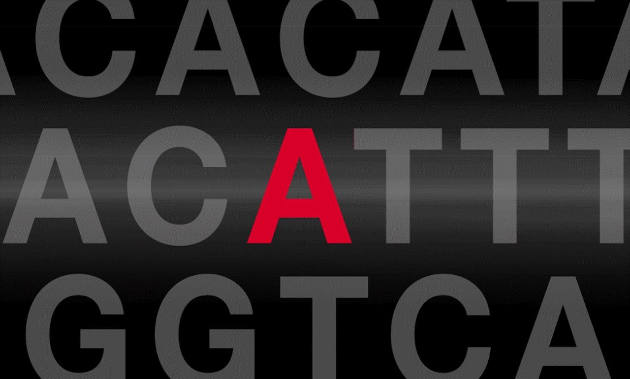 Genetics News Article F